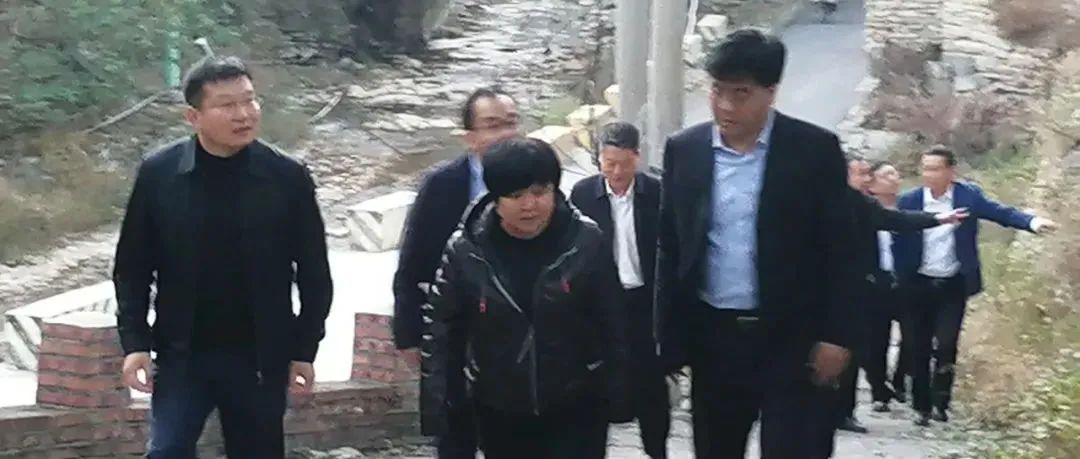 市委副书记、市长宋伟伟到庙子镇调度指导重点项目建设