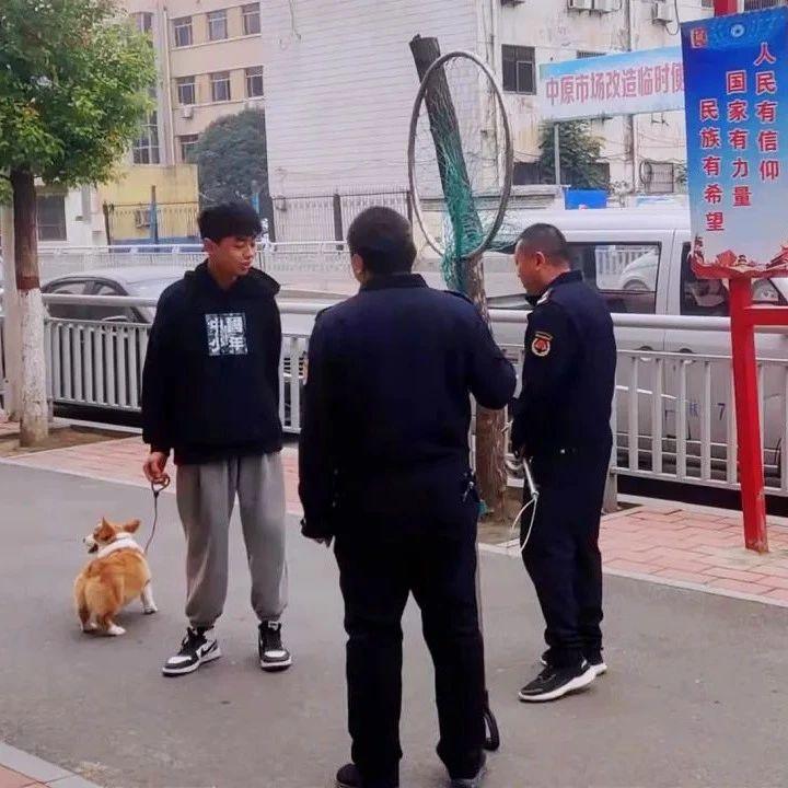 @长葛老乡专项整治来啦!:遛狗不牵绳?查处、收治!